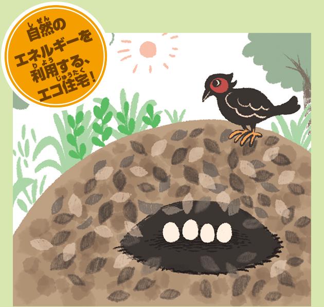 ツカツクリの巣