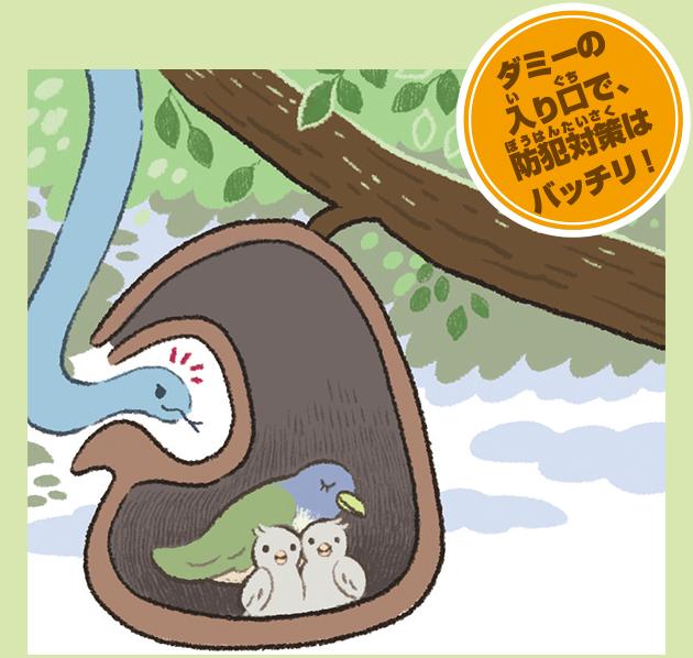 アフリカツリスガラの巣
