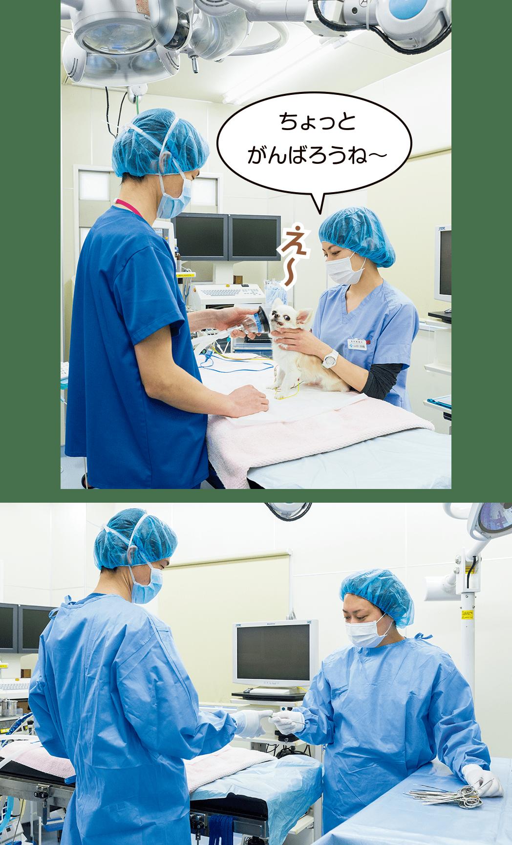手術のサポート