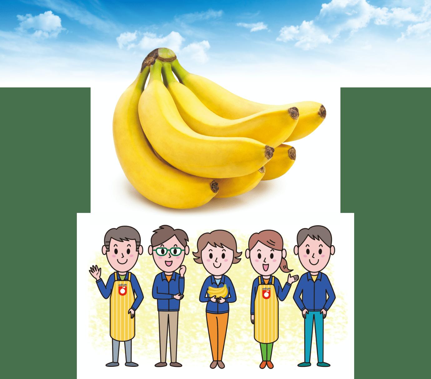 バナナの品質検査