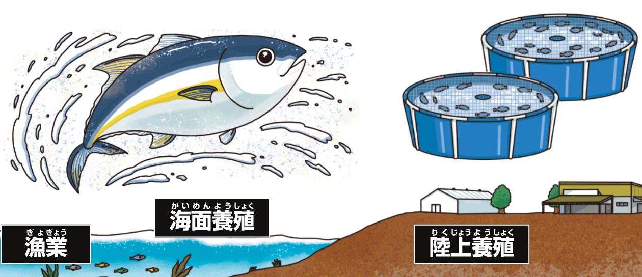養殖・漁業