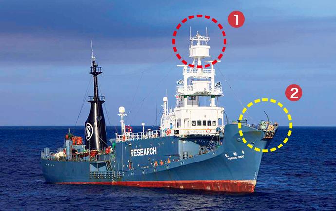 クジラの調査船