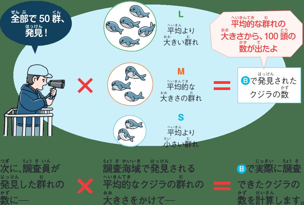 クジラの数を算出