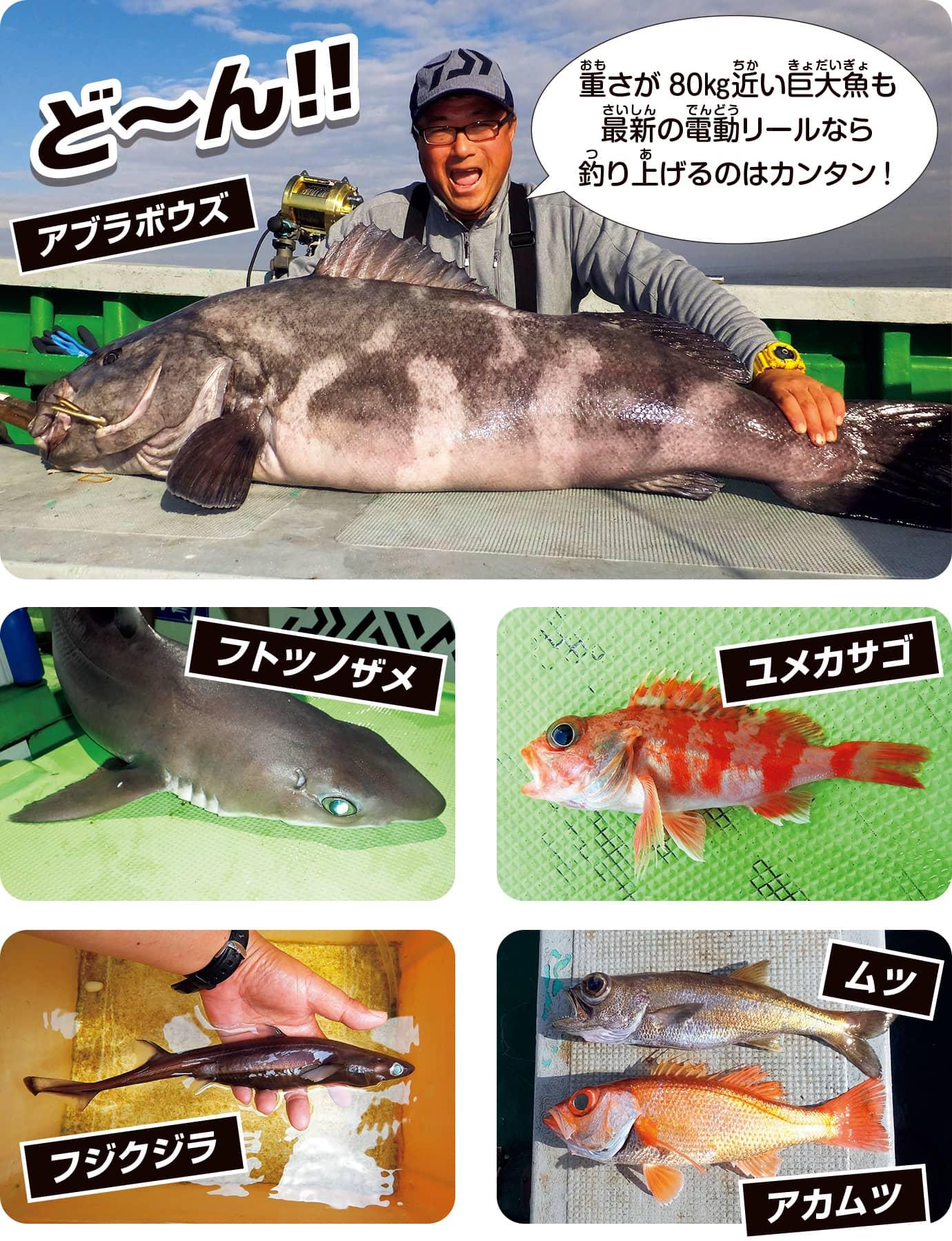 水深1000mの深海魚も釣れるようになった!