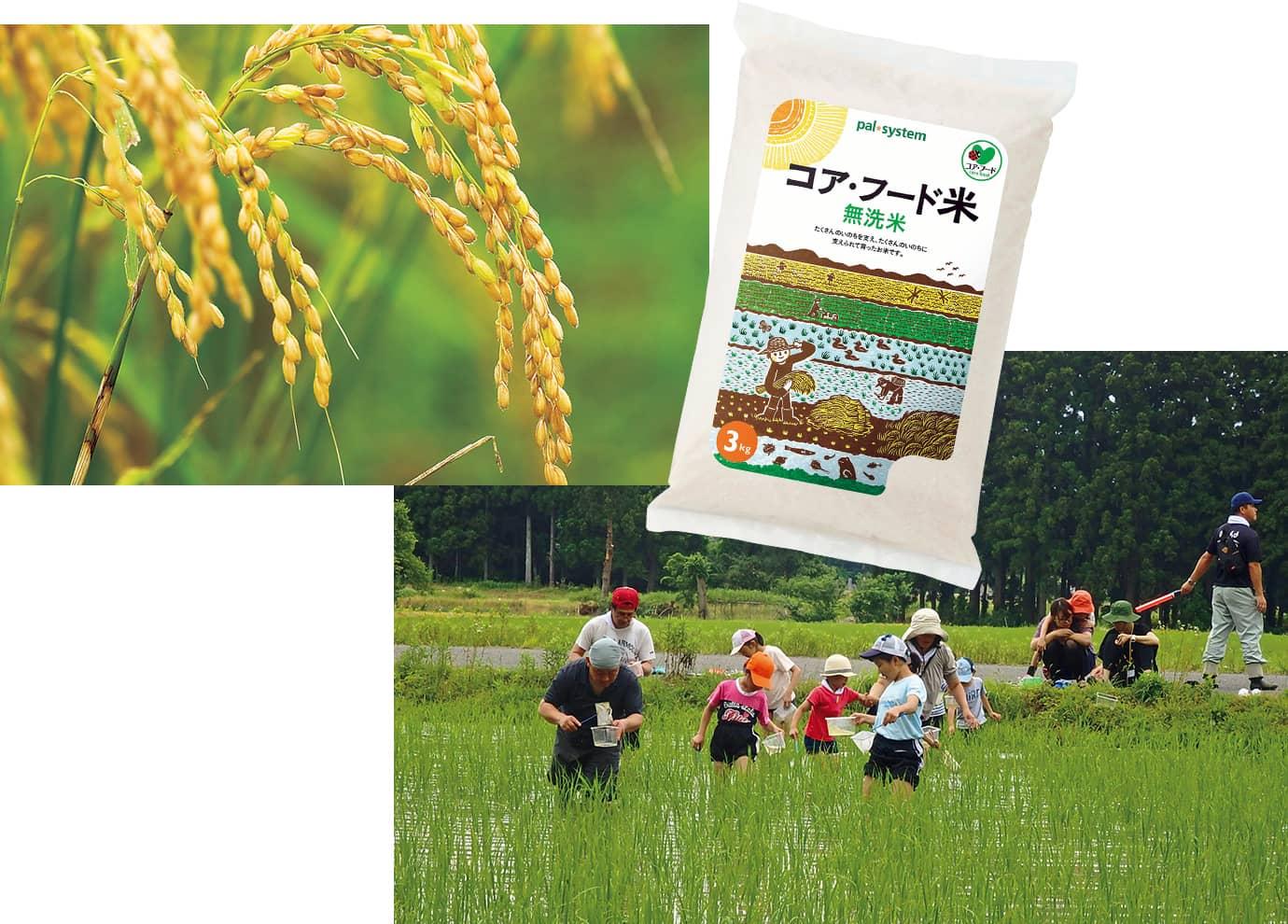 「コア・フード米」の産地