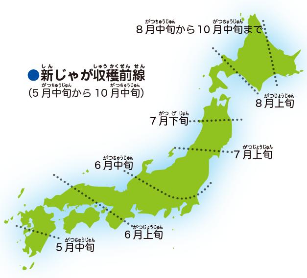1年を通じて、日本中のじゃがいもを使うよ