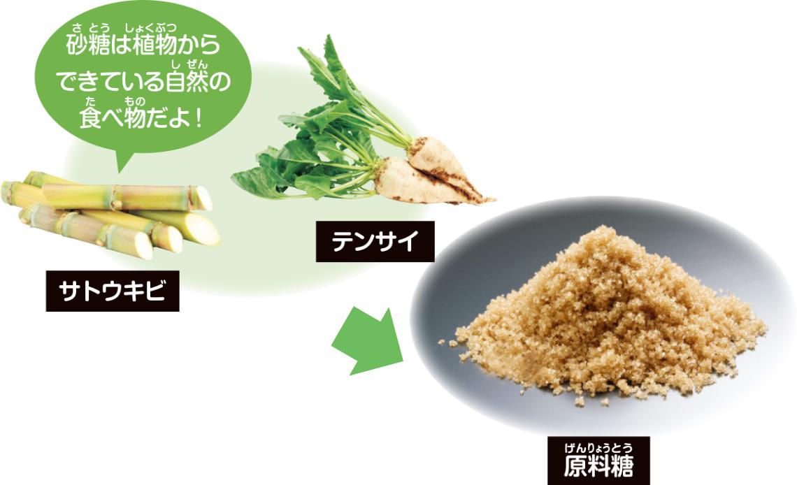 砂糖の原材料