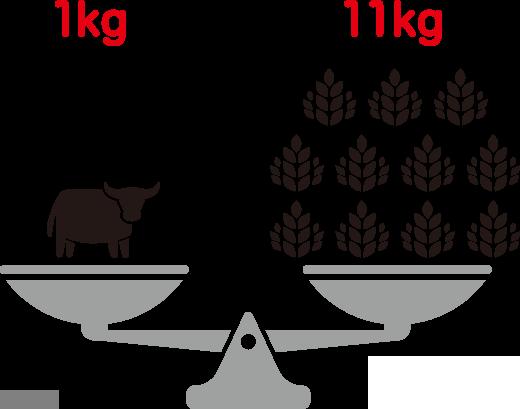 牛肉をつくるのに必要な穀物の量