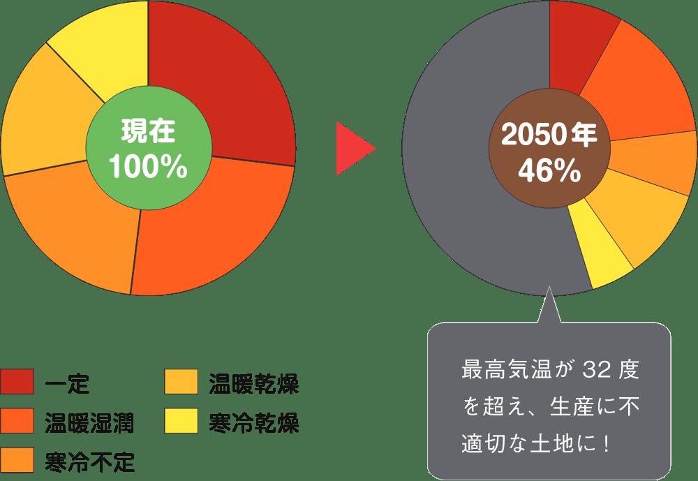 WCR年次報告書2017