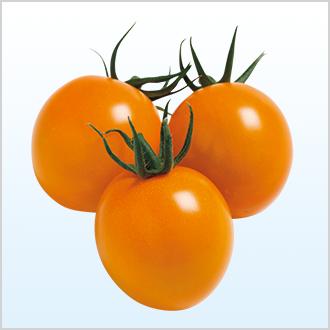 オレンジ千果