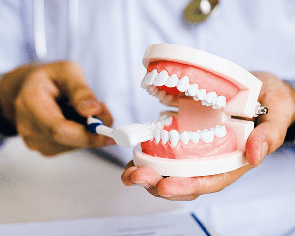むし歯や歯ぐきの病気の予防