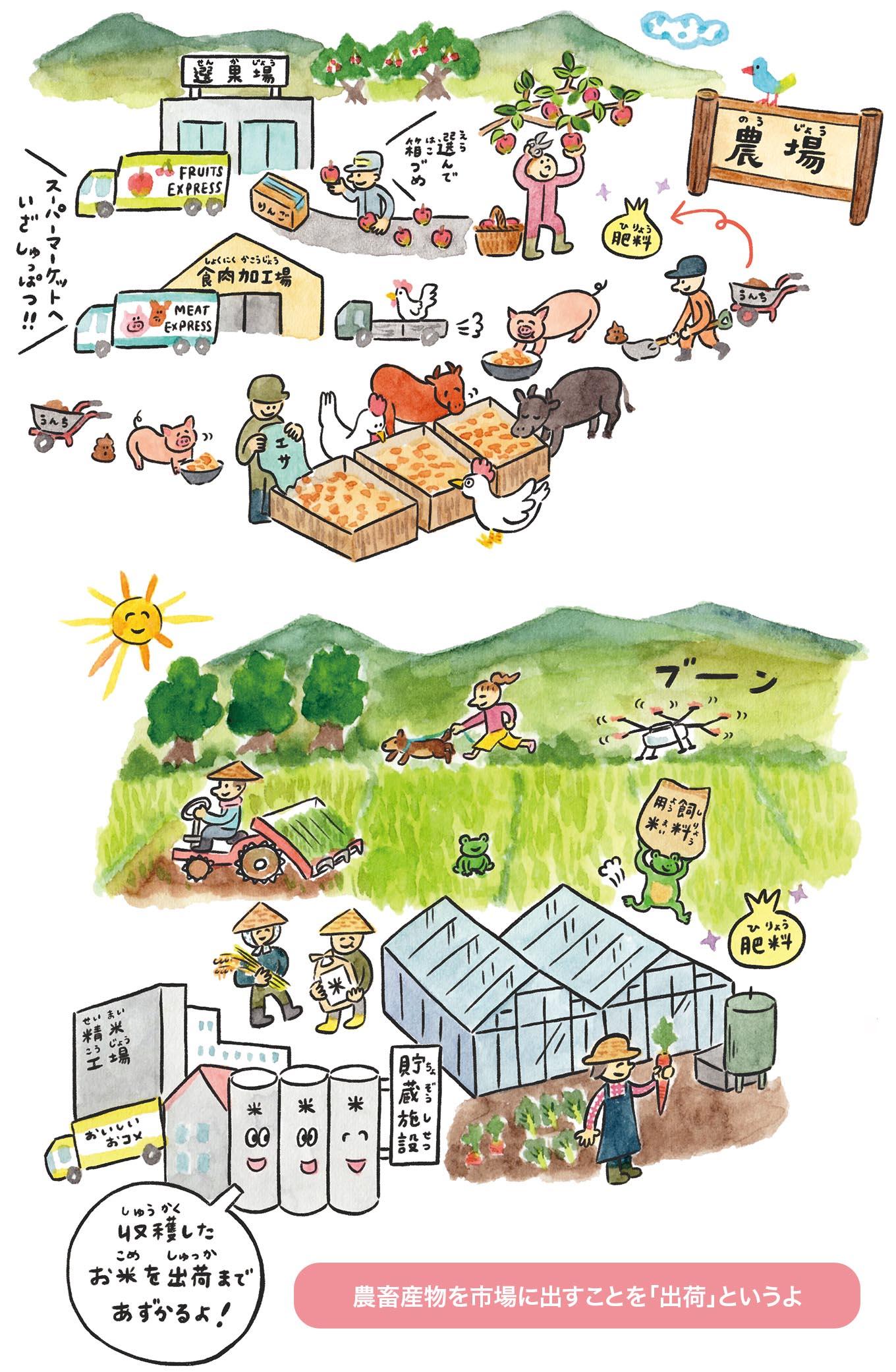 家畜や農作物を育てる