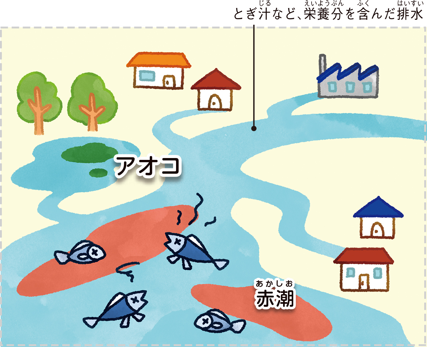 富栄養化でアオコや赤潮が発生