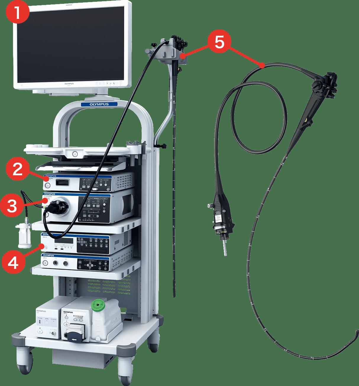 ビデオ内視鏡システム